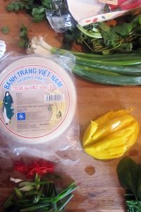 Empty the Fridge - Vietnamese lenterolletjes met mango en kruiden