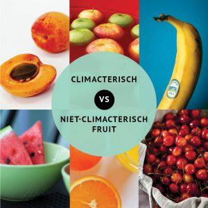 Empty the Fridge - Het verschil tussen climacterisch en niet-climacterisch fruit