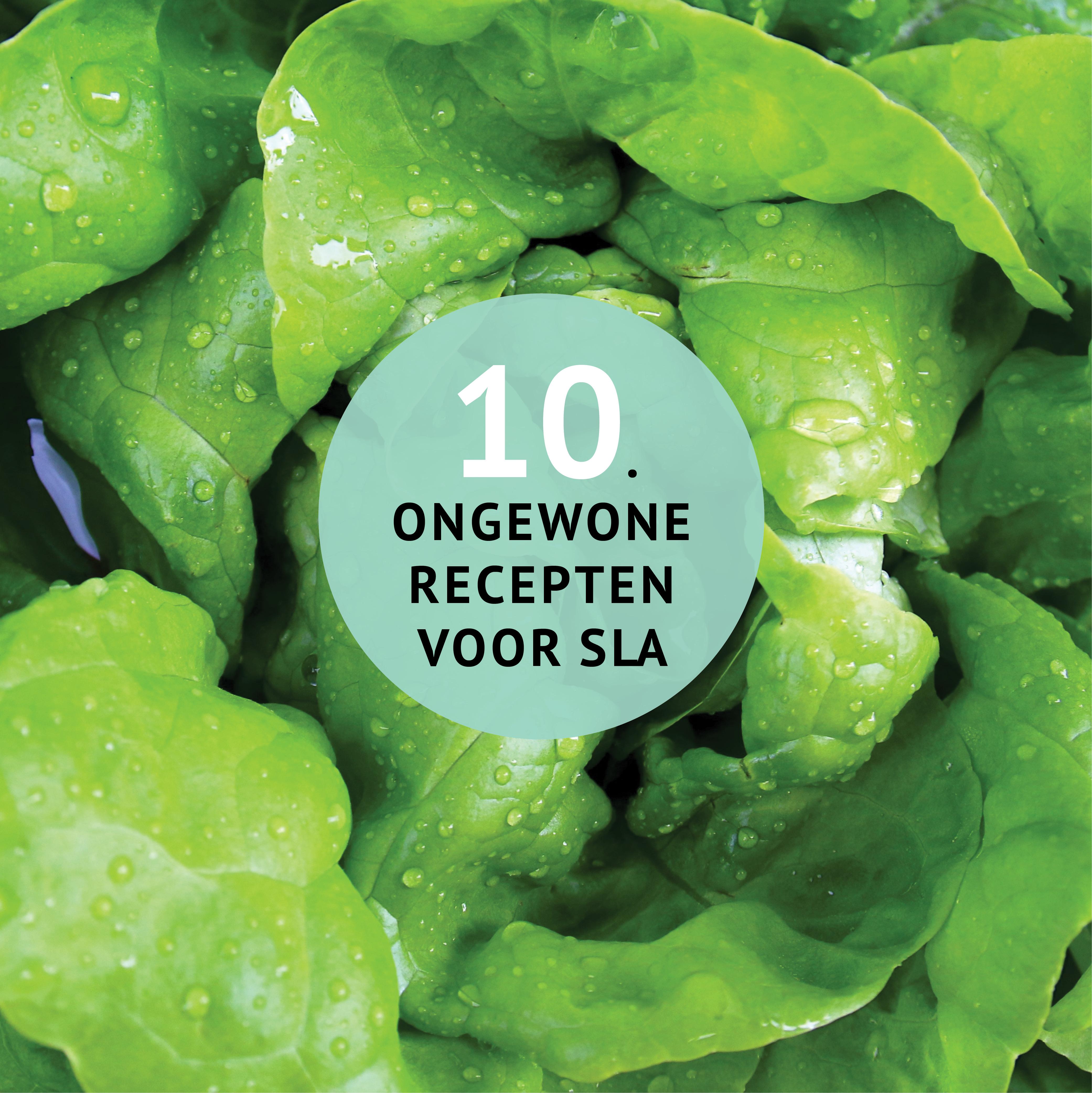 Empty the Fridge - 10 ongewone restjes recepten voor sla