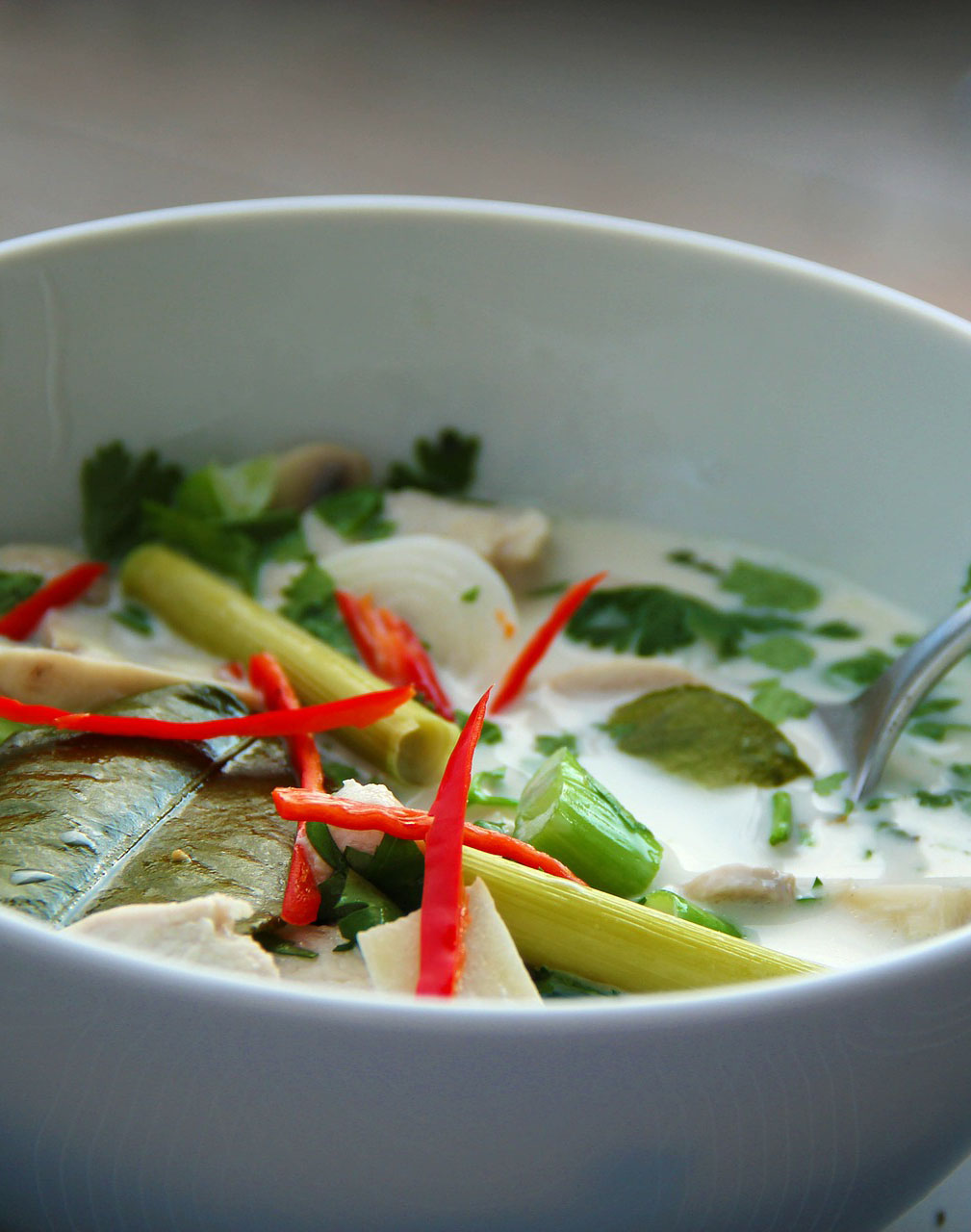 Empty the Fridge - Tom Kha Gai