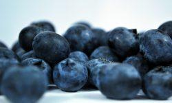 berries-184449_1920