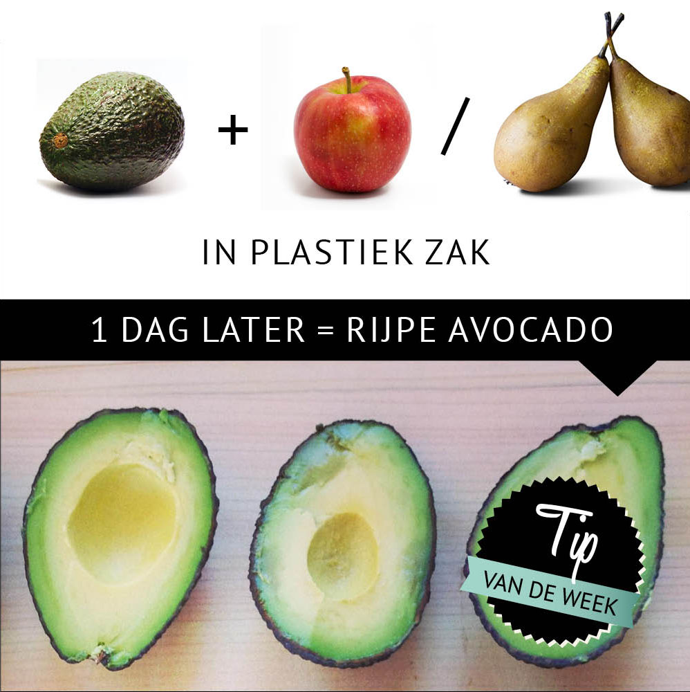 Empty the Fridge - Avocado sneller rijpen