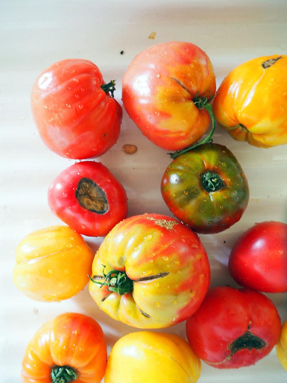 Empty the Fridge - Tomaten