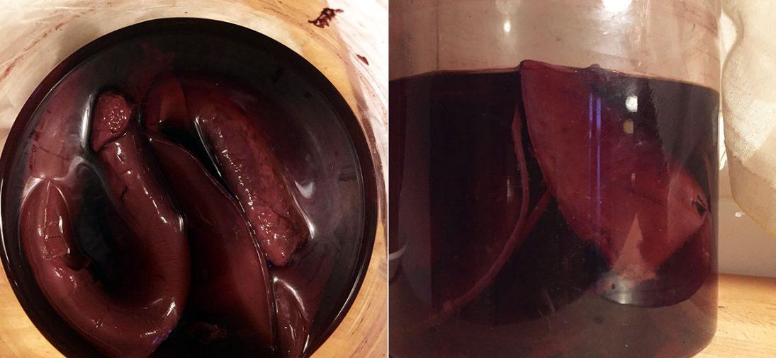 Empty the Fridge - Zelfgemaakte rode wijnazijn moeder